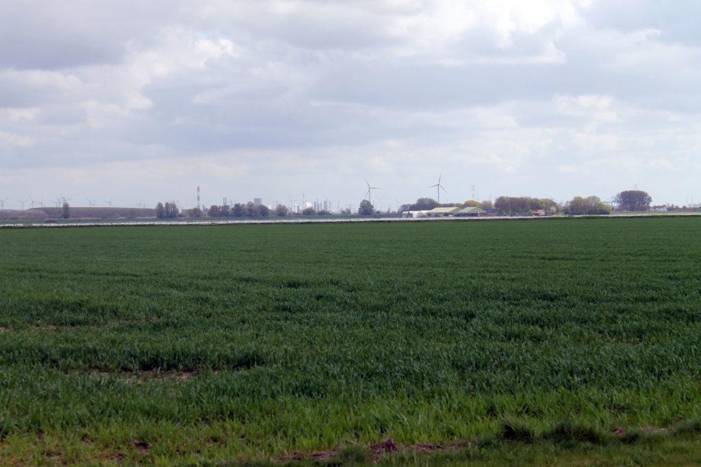 Doel Antwerpen Hoebeke Oud barrel