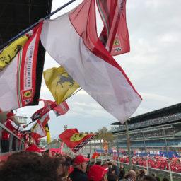 Ferrari mondiali: Tifosi vieren Ferrari zonder wereldtitel